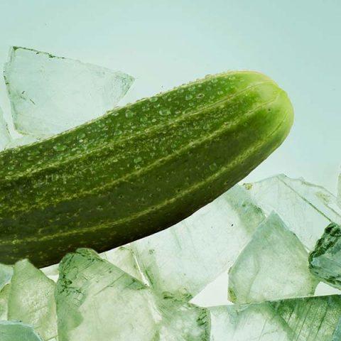 pepino-cristal-calterras
