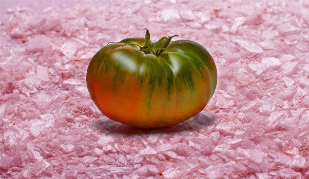 tomate_7