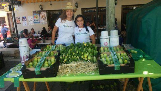 8ª Feria del pepino de Huete